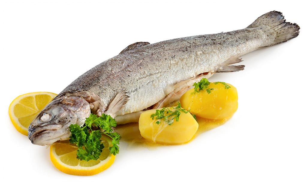 Boiled Trout's