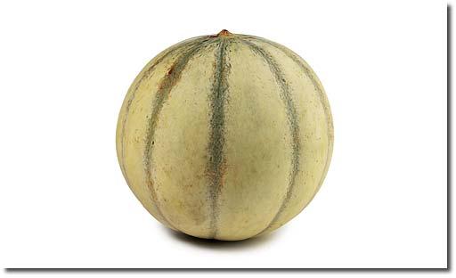 Rezepte mit charentais melone for Melone charentais
