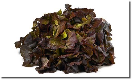 Oak leaf salad