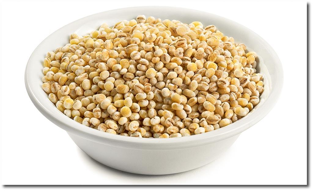 Barley Graupen
