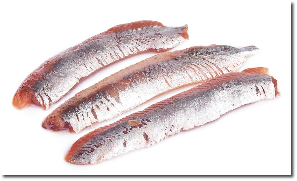 Anchovies fillets