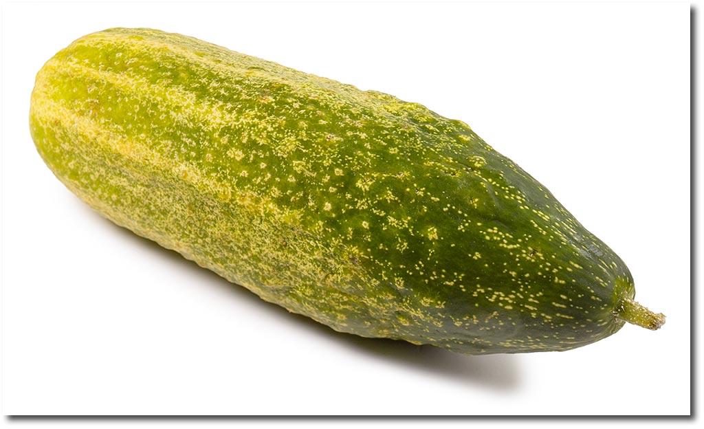 Cucumber stew